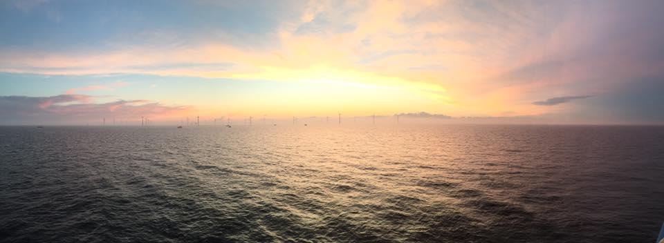 Amrumbank Wind Farm taken by Mark Wilson
